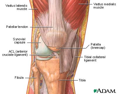Knee Pain Overview Causes Symptoms And Treatment