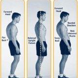 Poor And Proper Posture
